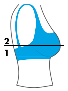 bra-size-calculator_graphic